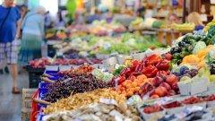 В предложението е заложено и българската държава да плаща 60 на сто от заплатите на сезонните земеделски работници