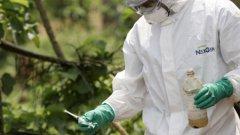 СЗО предупреждава за катастрофални опасности от разпространението на вируса