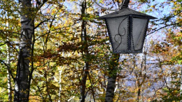 Чистият лечебен въздух на найголямата естествена брезова гора в Родопите е причина през 1961 г. Министерство на народното здраве да обяви туристическия комплекс за курорт с местно значение. В него, освен старите почивни бази, са изградени и много нови хотели, привличащи туристите найвече през летния сезон