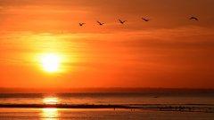 Джулаят е онзи миг, в който изгревът символизира издигането на идеала за свобода, равенство и братство
