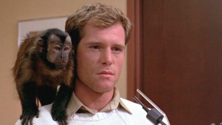 Monkey Shines / Маймунска привързаност (1988 г.)  Всяко едно нещо може да е основа на хорър филм, включително и маймуните. В този филм главният герой Алън е атлет, който остава инвалид след инцидент. Негов приятел, учен, му предоставя един от своите експерименти – интелигентна маймуна, която да служи като помощник на Алън. Отношенията между човек и маймуна стават смущаващо дълбоки, особено когато животното става проводник на гнева на бившия атлет към хората, които са го засегнали.
