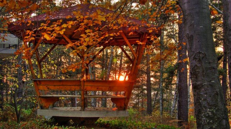 Есенната красота на дърветата е способна, дори само за миг, да върне живота на отдавна притихналите хижи