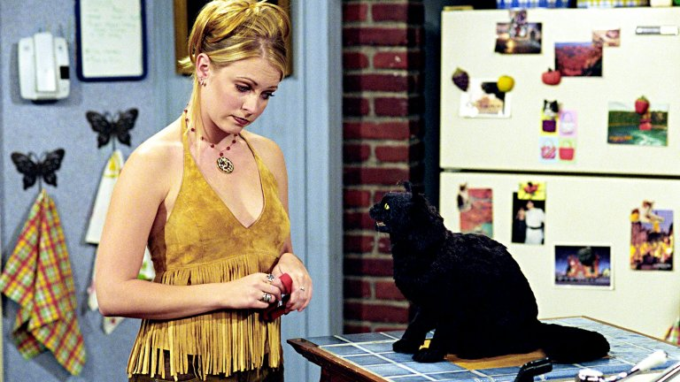 """Sabrina The Teenage Witch / """"Сабрина, младата вещица"""" Още една вещерска тийн история следяхме в този сериал, в който главната роля бе поверена на Мелиса Джоун Харт. Тя говореше с черния си котарак, гледаше бебе, което без да иска превърна в старец и редовно влизаше в силно конфузни ситуации, които водеха до обилни количества смях."""