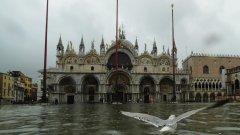 През 150-те години, в които се регистрират нивата на приливите и отливите във Венеция, два високи приливи и отливи над 1,5 метра никога не са регистрирани за една година. През ноември имаше три за една седмица